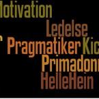 """27. januar 2014: """"Primadonnaledelse"""", oplægsholder: Helle Hein."""